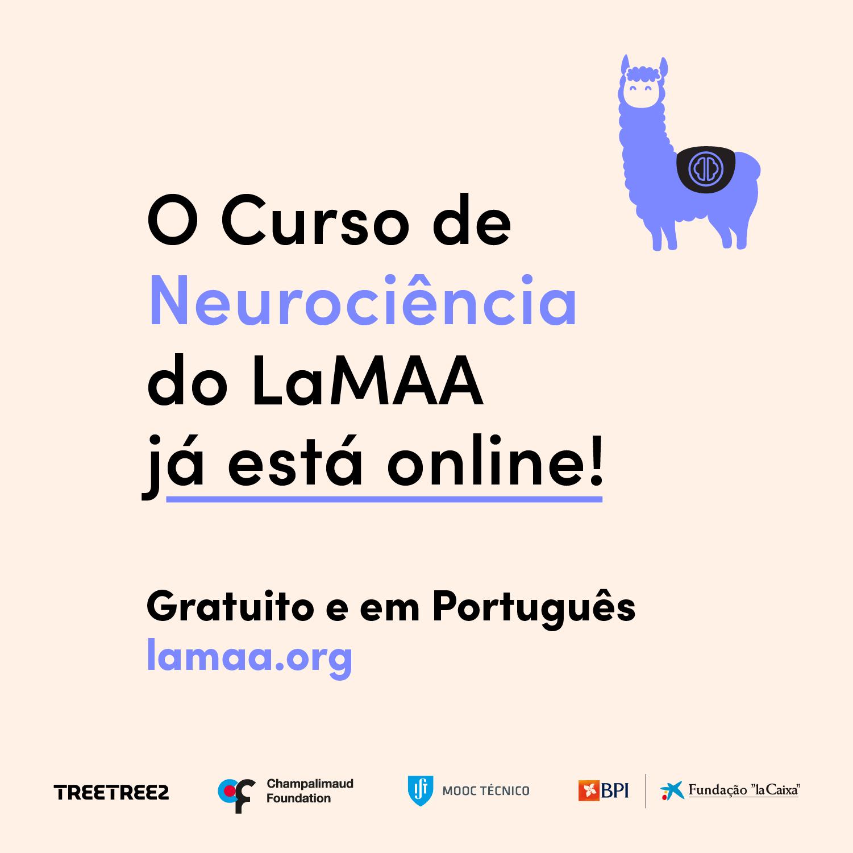 LaMMA Neuroscience Course