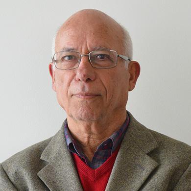 Adelino Cardoso